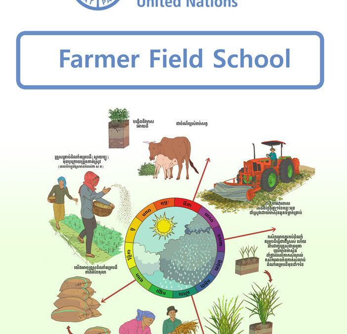 FARMER FIELD SCHOOL, FAO